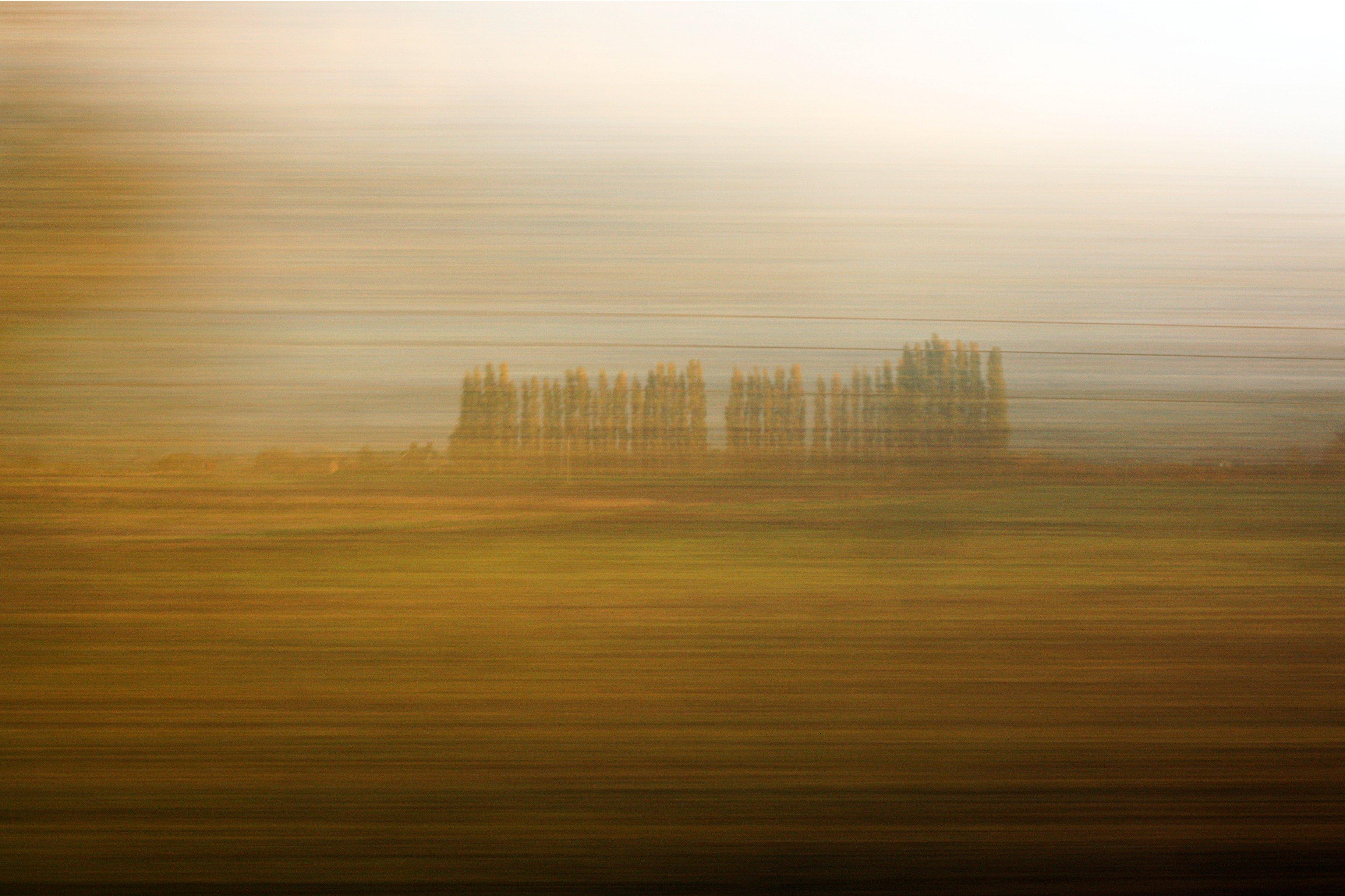 Shifting Seasons: Autumn Train Ride